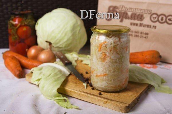 В нашей стране квашеная капуста является одним из основных продуктов питания не только в зимне-весенний период, когда ..