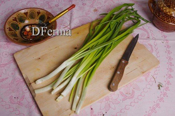 Свежий зеленый лук Зеленый лук - это старейшее культурное растение, родина которого неизвестна. Разведением лука заним..