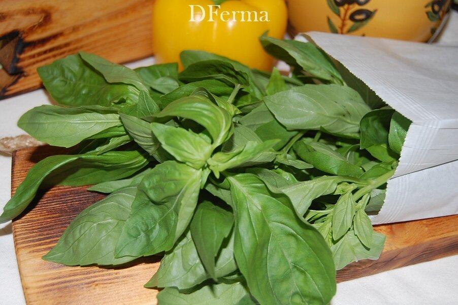 Базилик зеленый Базилик зеленый содержит витамин Р и провитамин А. Стимулирует работу пищеварительной системы и усилив..