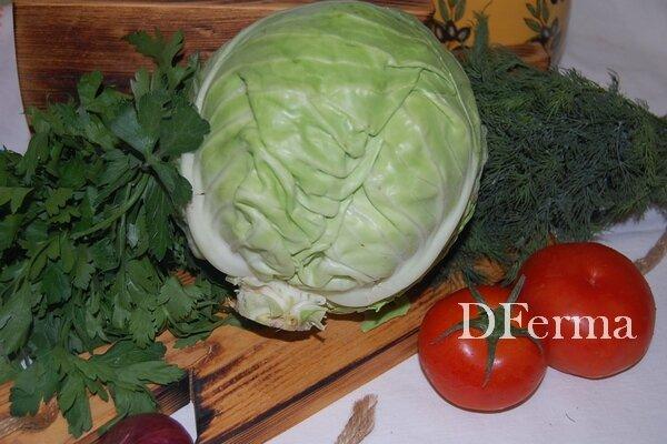 Купить капусту белокочанную (молодая)  Молодая белокочанная капуста — прекрасный источник  биологически активных..