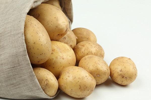 Купить молодой картофель Появление  картофеля в России обычно связывается с именем Петра I, который в конце  17 века п..